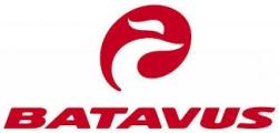 Beste prijs Batavus elektrische fietsen