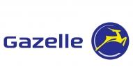 Beste prijs Gazelle elektrische fietsen
