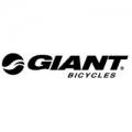 Beste prijs Giant elektrische fietsen